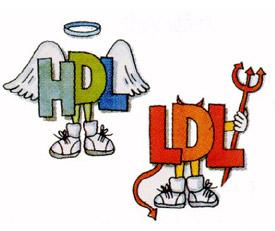 Colesterol HDL-LDH